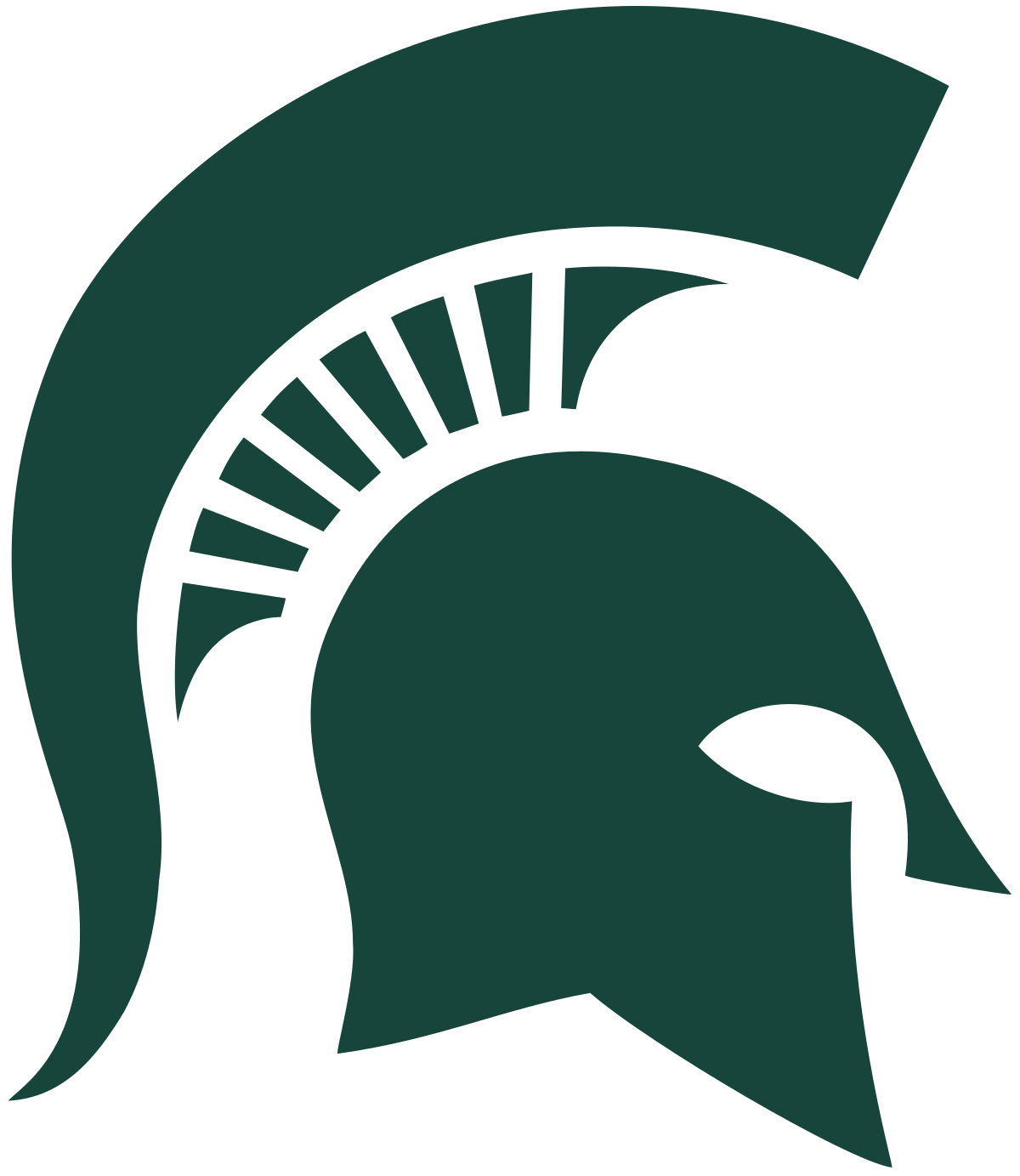Michigan State University Volleyball