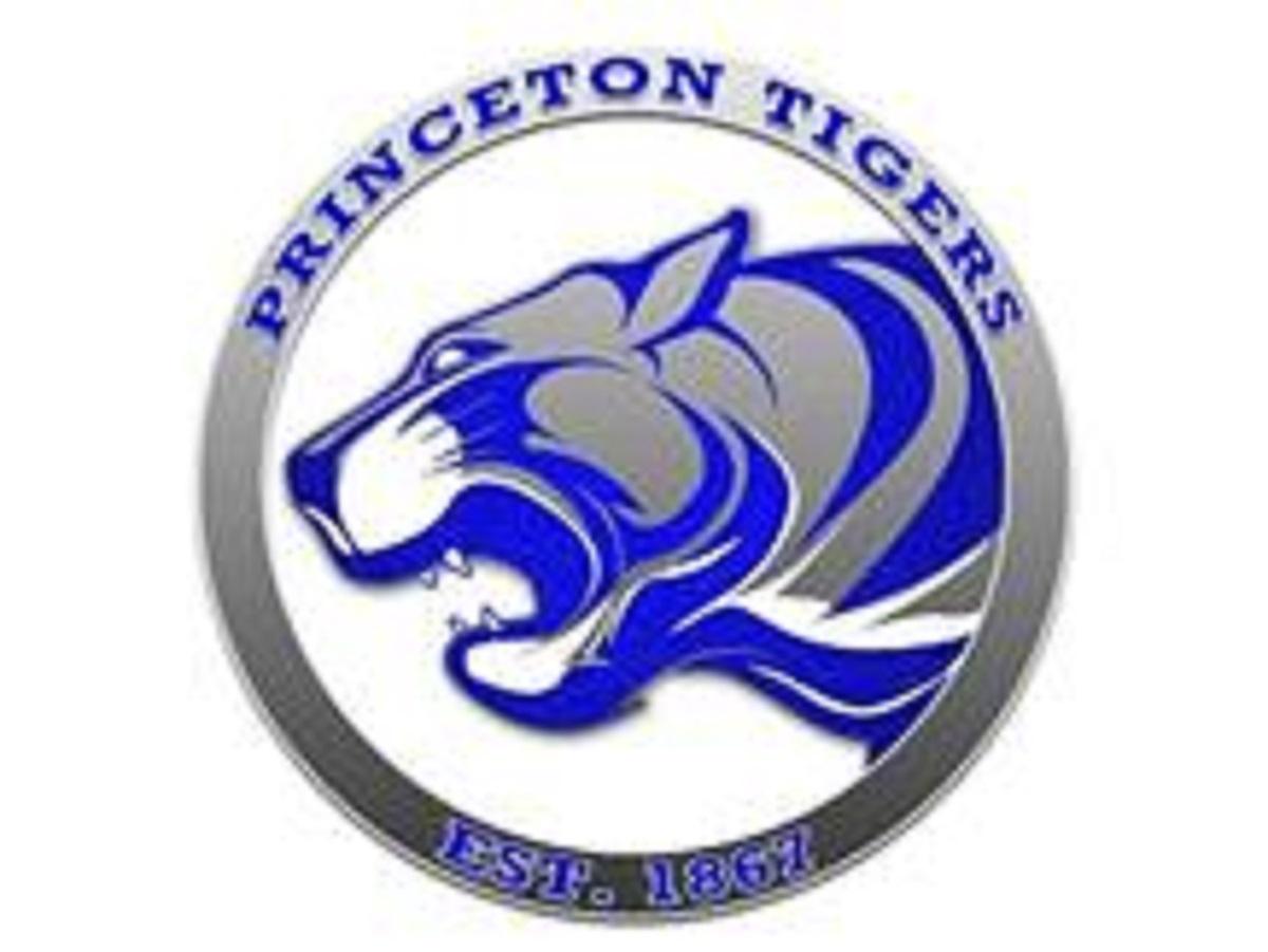 Princeton Tiger logo of a tiger