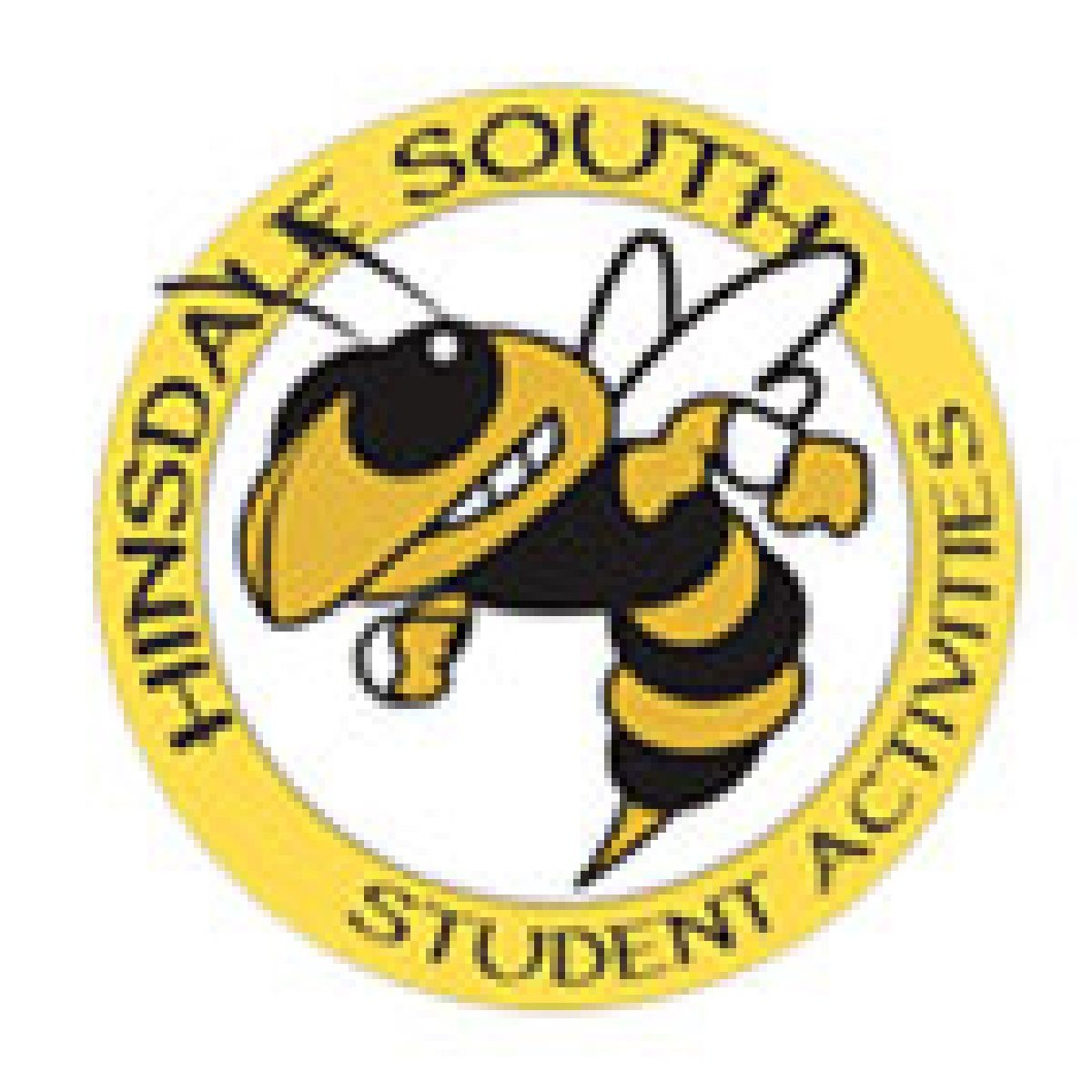 Hillsdale South Logo of a cartoon bee who is black and yellow